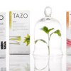 AP Studios / Commissioned: Tazo Tea Rebrand