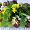 AP Studios / Recipe: Fresh Grape Mosaic Salad